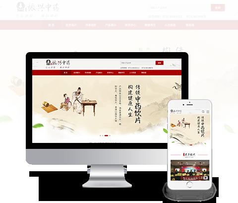 振兴中药-长沙药材网站建设案例